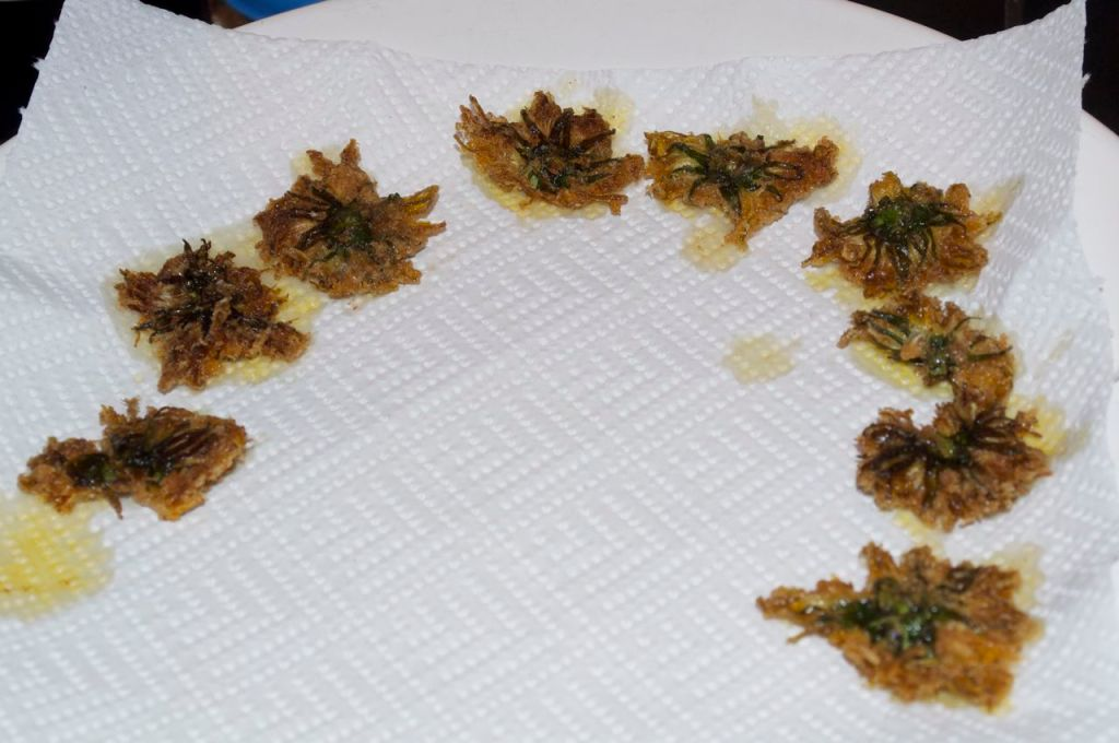 14 - Drain the fried dandelion flowers on a piece of kitchen towel