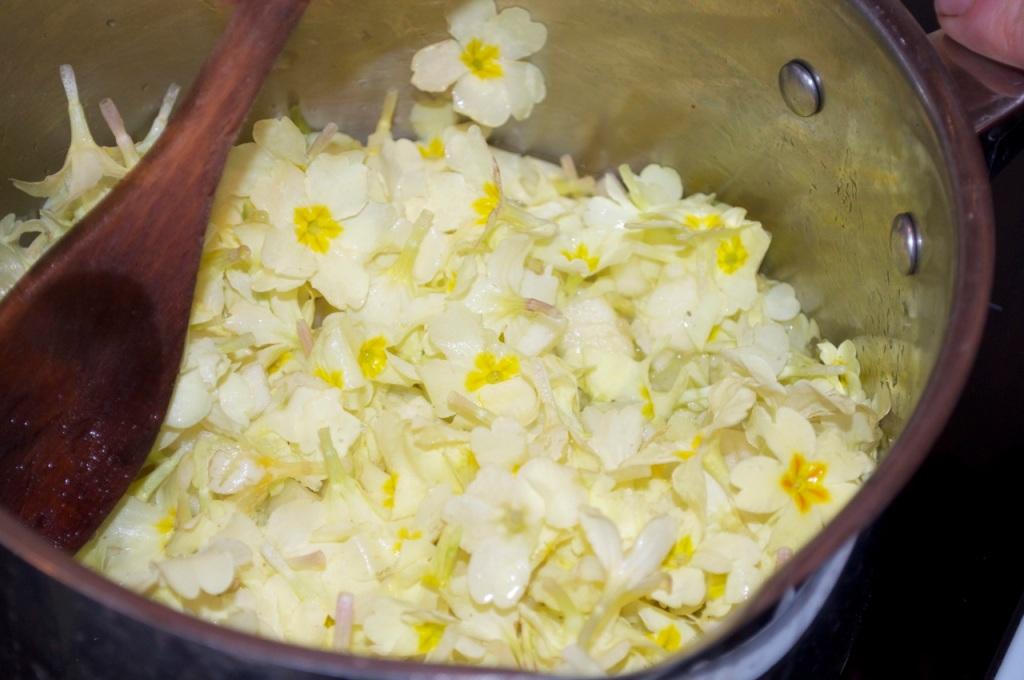 Primrose flowers in saucepan