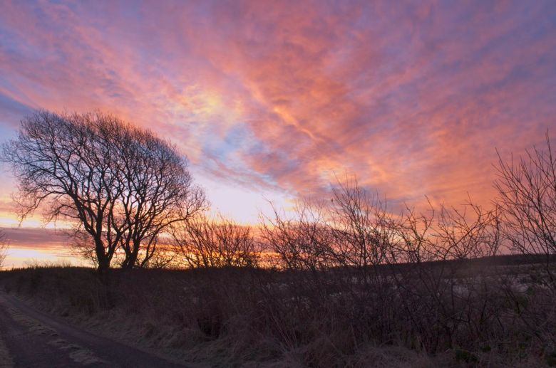 15th January - sunrise