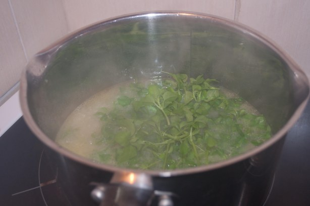 Cook until the potato is soft then add the fresh chickweed and cook for a further 5-10 minutes before blending with a hand blender