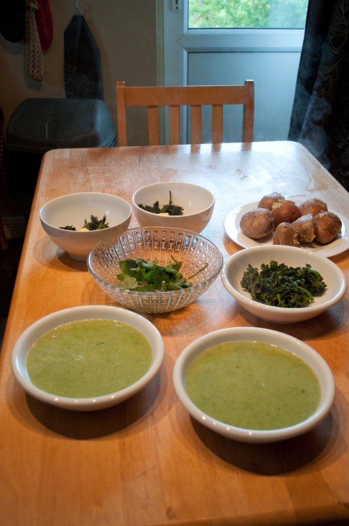 From the summer... Chickweed soup, seakale florets and sour thistle salad, a foraged meal...