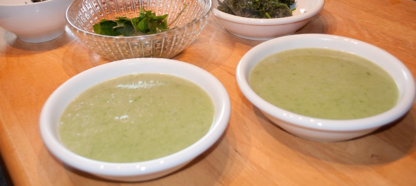 Chickweed soup... will warm you up on a cold day