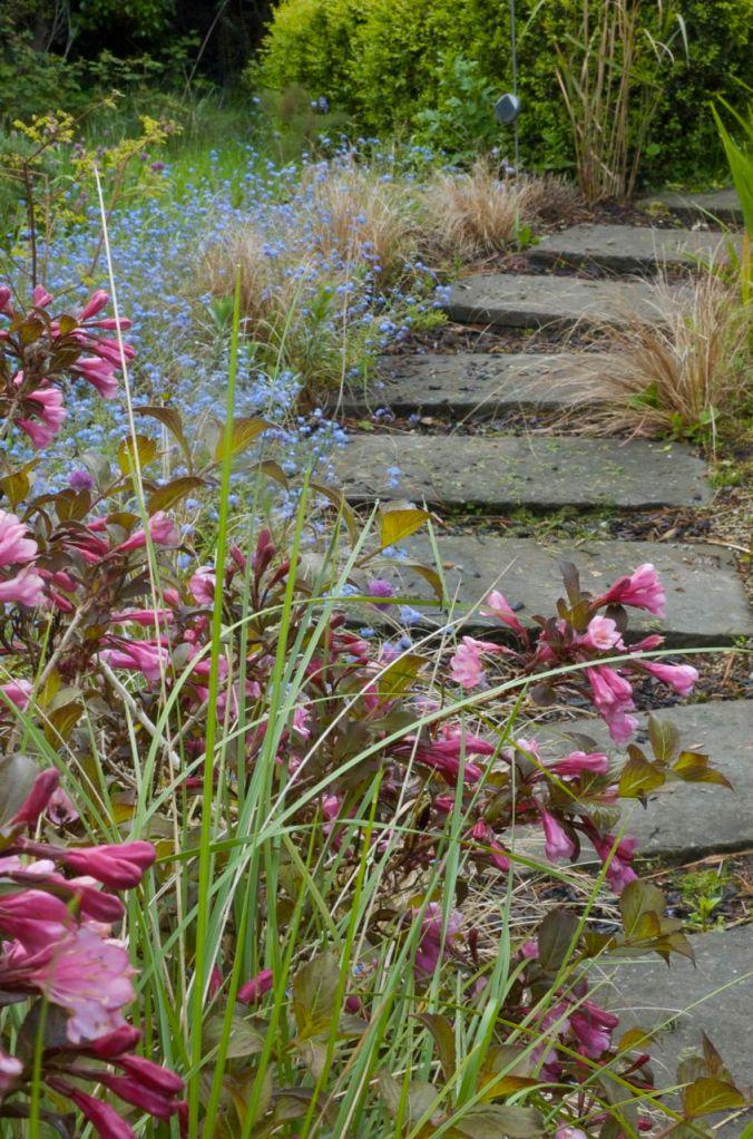 Garden path