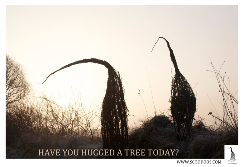 HAVE YOU HUGGED A TREE WITH LOGO